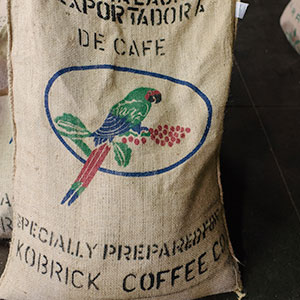 Burlap Bag Especially Preparred for Kobrick Coffee Company