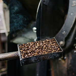 Roasted Brean Directly from Roaster
